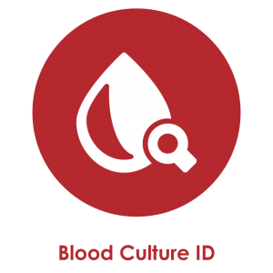 Blood Culture ID